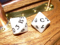 two 16-sided dice